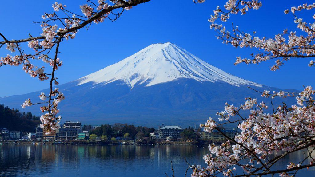 School Trip to Japan