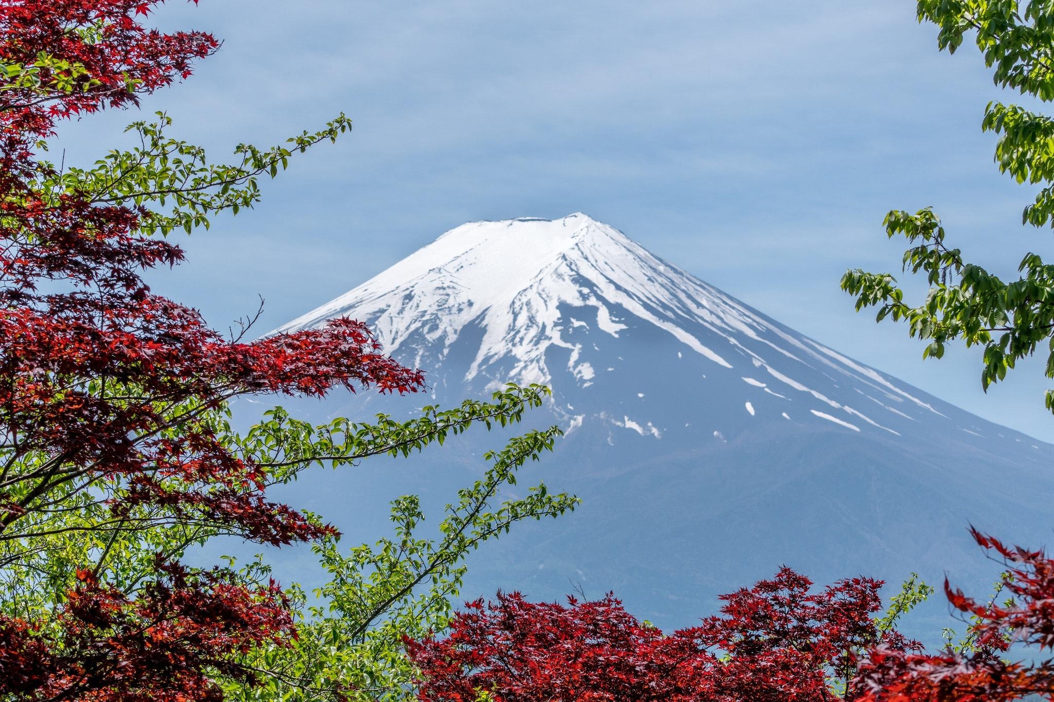 CAS trip to Japan