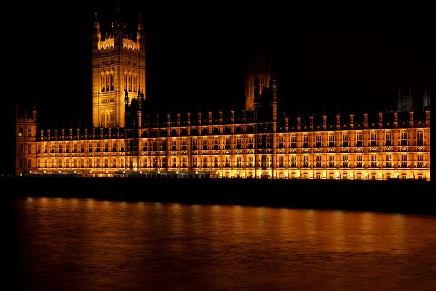 politics educational tour to parliament in london