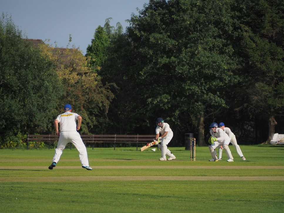 cricket tours netherlands